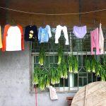 HungryGhosts-Zhangjiajie16.1